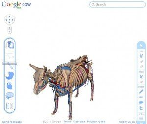 Google Cow lets you see inside